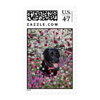 Abby in Flowers – Black Lab Dog Stamp