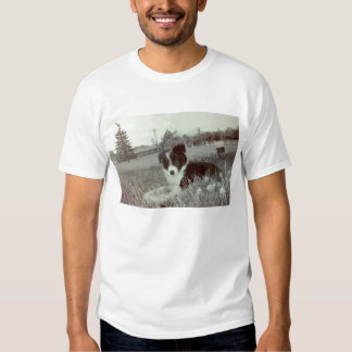 Abby The Awesome Border Collie T Shirts
