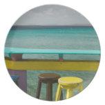 ABC Islands, BONAIRE, Kralendijk: Ocean View Dinner Plate