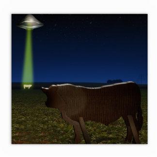 Abducción extranjera de vacas falsas en el pasto fotoescultura vertical