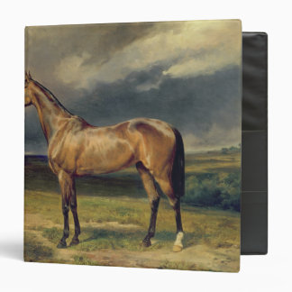 Abdul Medschid' the chestnut arab horse, 1855 Binder