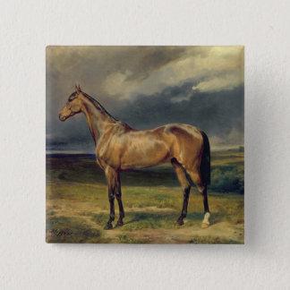 Abdul Medschid' the chestnut arab horse, 1855 Button
