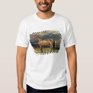 Abdul Medschid' the chestnut arab horse, 1855 Shirt