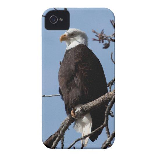 ABE Alaskan Bald Eagle iPhone 4 Case