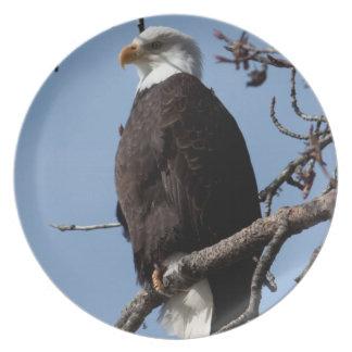 ABE Alaskan Bald Eagle Melamine Plate