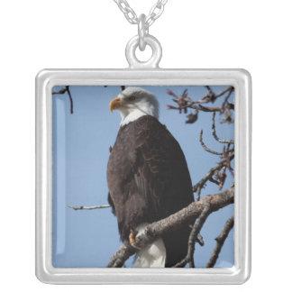 ABE Alaskan Bald Eagle Square Pendant Necklace