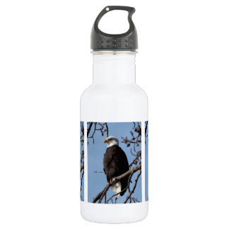 ABE Alaskan Bald Eagle Stainless Steel Water Bottle