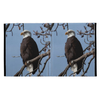 ABE Eagle calvo de Alaska
