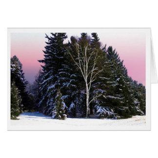Abedul del invierno tarjeta pequeña