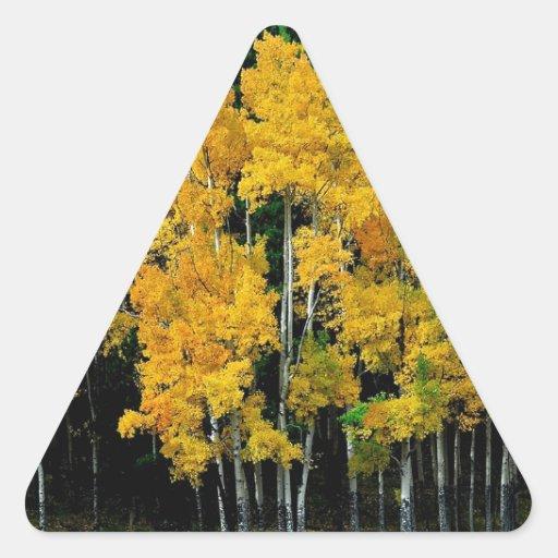 Abedul del otoño del árbol calcomanía de triangulo personalizadas