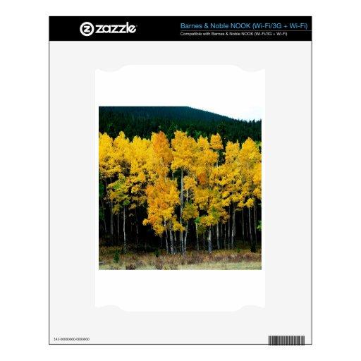 Abedul del otoño del árbol skins para NOOK