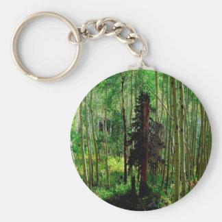 Abedul flaco del árbol llaveros