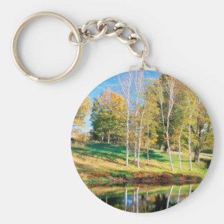 Abedul Vermont de los árboles Llaveros