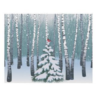 Abedules en el bosque del invierno