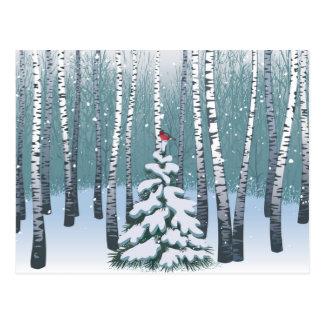 Abedules en el bosque del invierno tarjeta postal