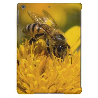 Abeja africana de la miel con la alimentación de funda para iPad air
