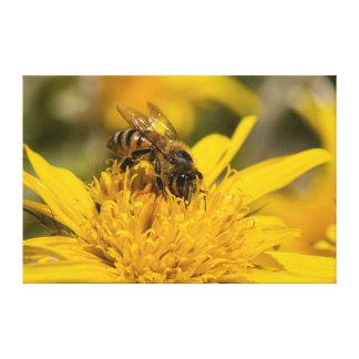 Abeja africana de la miel con la alimentación de impresiones de lienzo