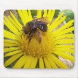 abeja alfombrilla de ratón