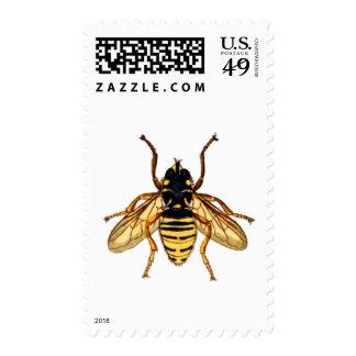 Abeja amarilla de la miel del vintage sellos