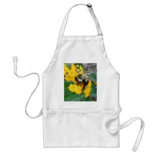 abeja amarilla y negra en la flor amarilla delantal