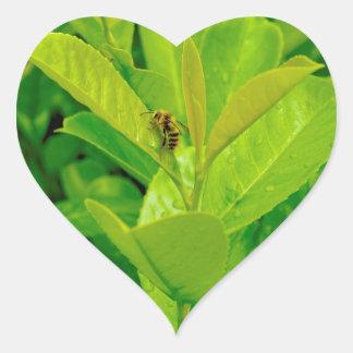 Abeja cariñosa verde pegatina en forma de corazón