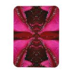 Abeja color de rosa rosada Sting - modelo de la mi Imanes Rectangulares