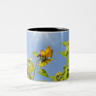 abeja de la extra grande en el girasol taza de dos tonos