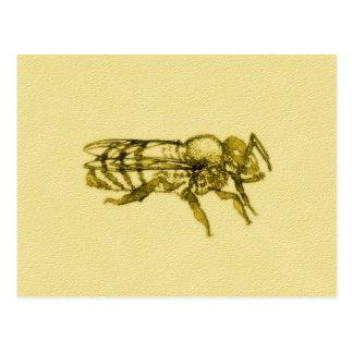 Abeja de la miel de la acuarela postal
