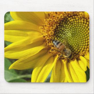 Abeja de la miel del girasol amarillo mouse pads