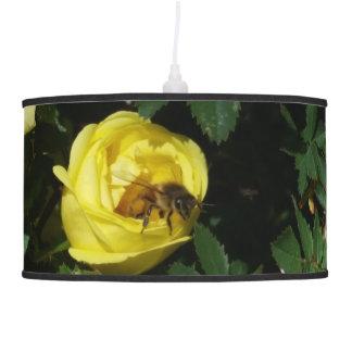 Abeja de la miel dentro de un rosa amarillo lámpara de techo