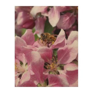 Abeja de la miel en el flor rosado de Crabapple Impresión En Madera