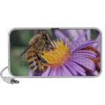 Abeja de la miel en la flor rosada púrpura laptop altavoces