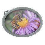 Abeja de la miel en la flor rosada púrpura hebilla de cinturón