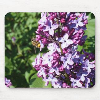 Abeja de la miel en lilas de la primavera alfombrillas de ratones