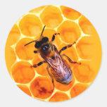 Abeja de la miel etiquetas