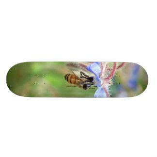 "Abeja de la miel patineta 7 3/8"""