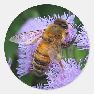 Abeja de la miel pegatina redonda