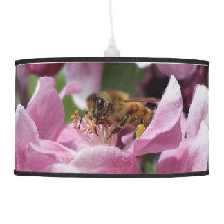 Abeja de la miel que poliniza el flor rosado del lámpara de techo
