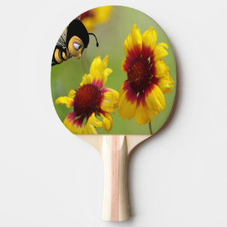 Abeja de Nonzomb de la paleta de los tenis de mesa Pala De Ping Pong