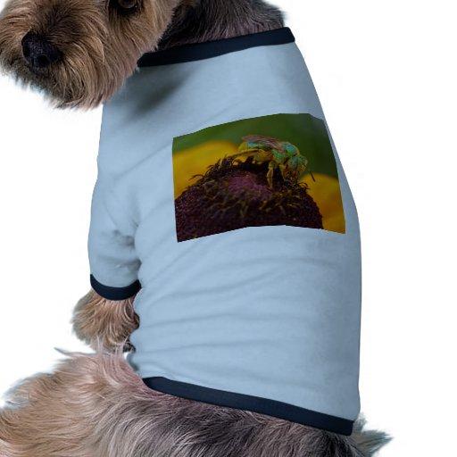 Abeja del sudor en los parques de atracciones de D Camiseta Con Mangas Para Perro
