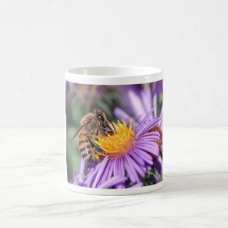 Abeja en el Echinacea (Coneflower púrpura) Taza Básica Blanca