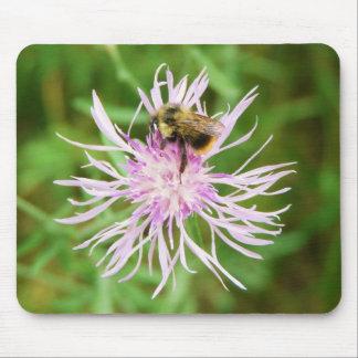 Abeja en el flor de la flor tapete de raton