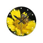 Abeja en el reloj amarillo de la flor
