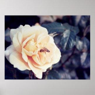 abeja en estampado de flores póster
