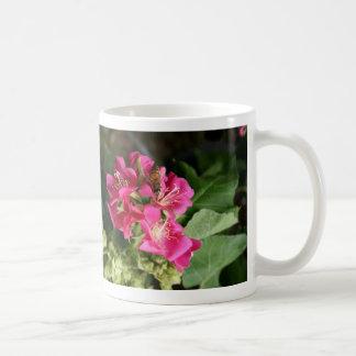 abeja en flores múltiples rosadas