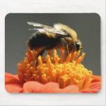 Abeja en la flor anaranjada alfombrilla de ratón