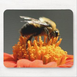Abeja en la flor anaranjada mousepad