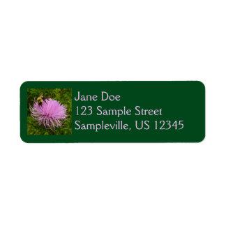 Abeja en la flor del cardo etiquetas de remite