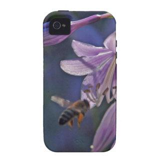 Abeja en la flor púrpura Case-Mate iPhone 4 carcasas