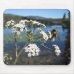 Abeja en la flor tapete de ratón